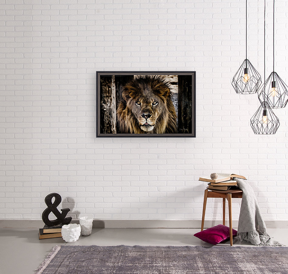 A Regal Lion with Floating Frame