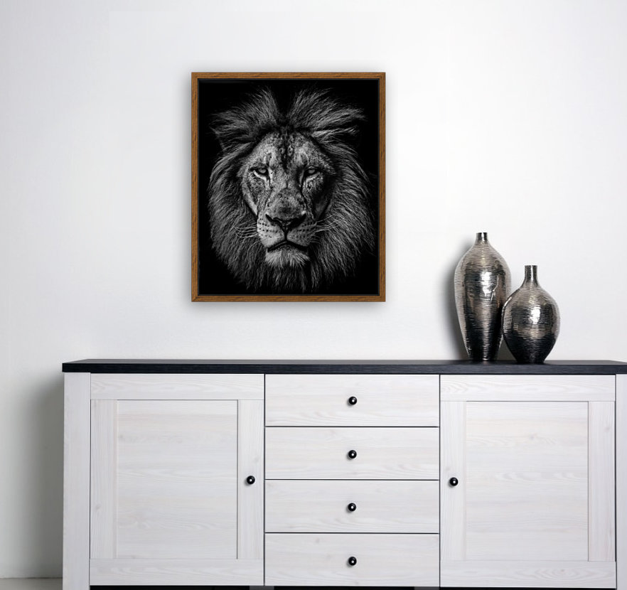 A Lion in Black & White with Floating Frame