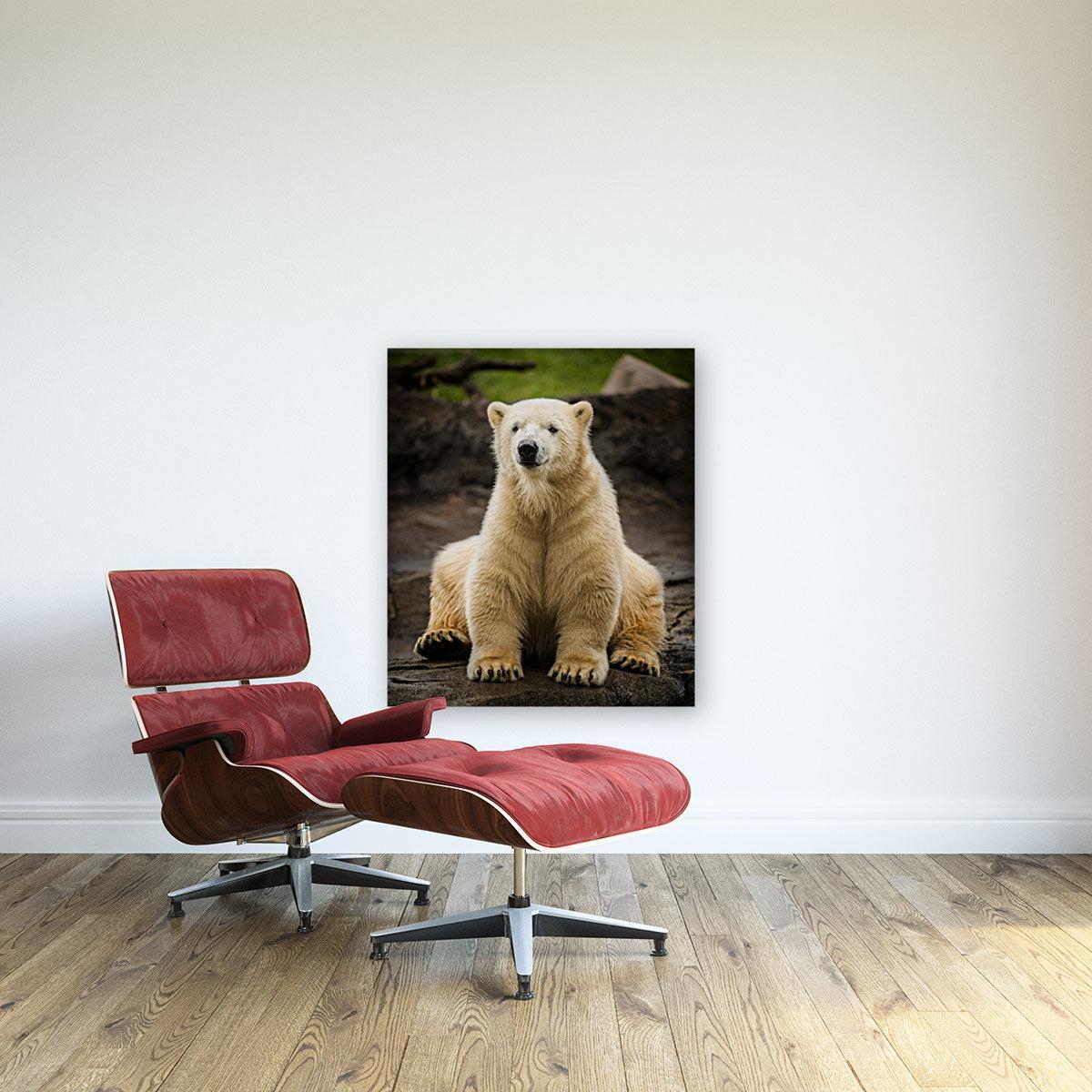 Polar Bear Cub  Art