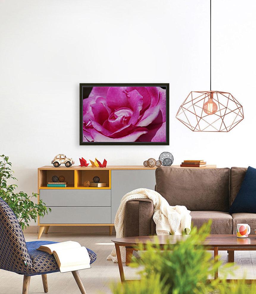 Heart Of Pink Rose  Art