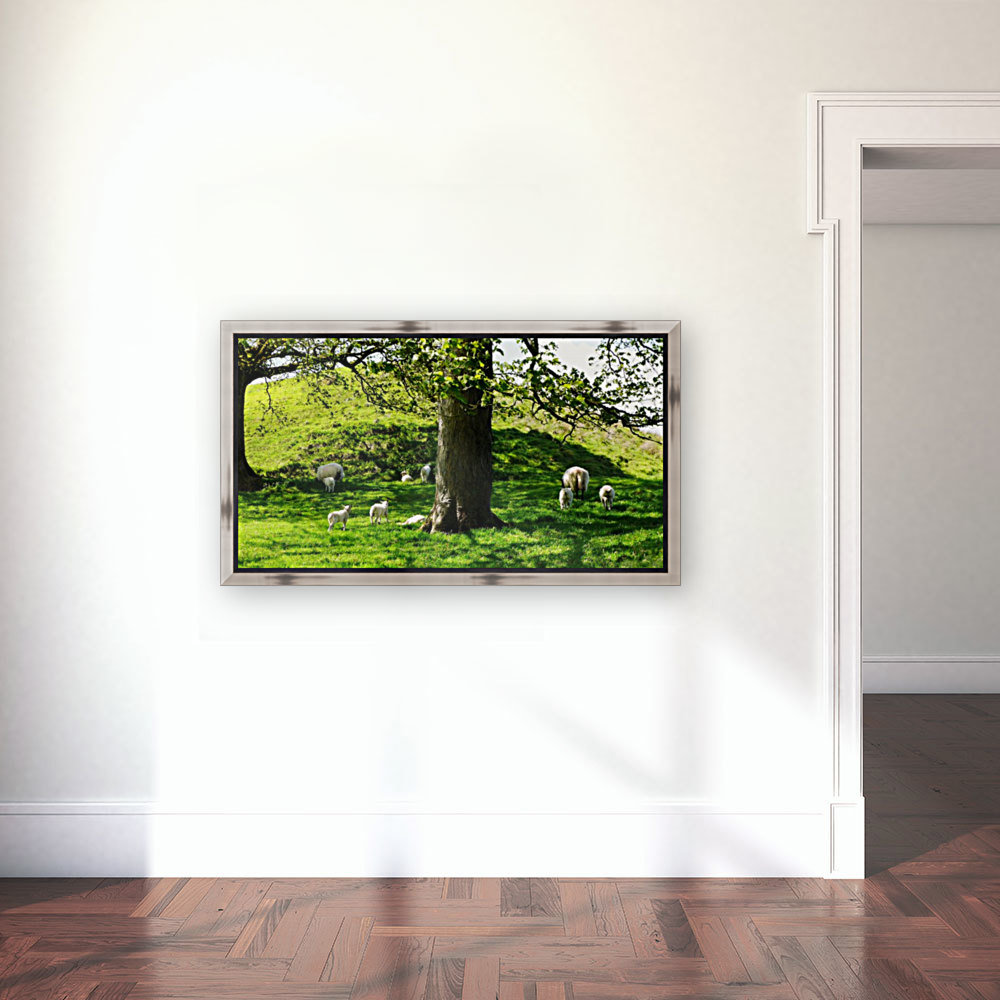 Finding Shade - Northern Ireland 2  Art