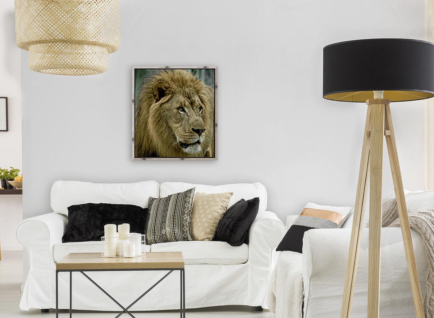 Extreme close up Lion  Art