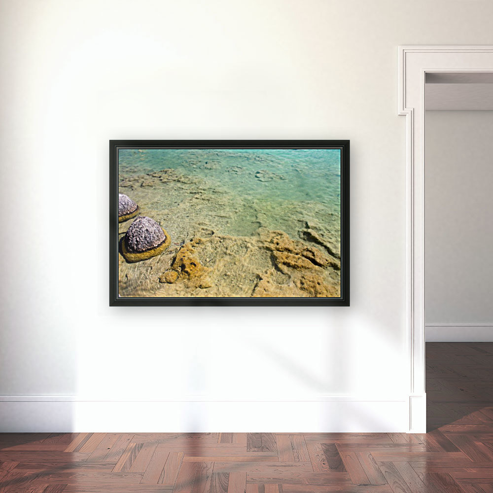 Crystal Clear with Floating Frame