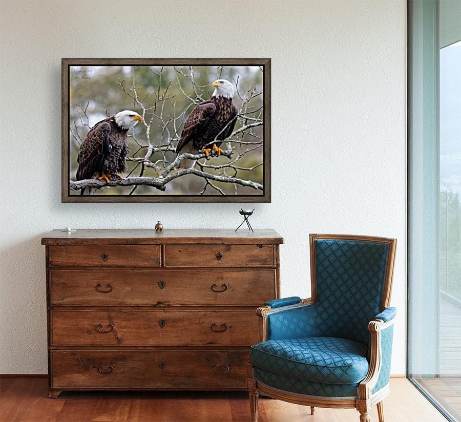 Bald Eagles  Art