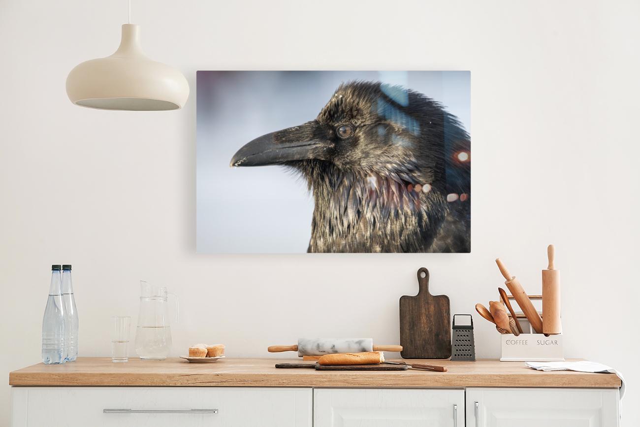Raven - Up Close  Art