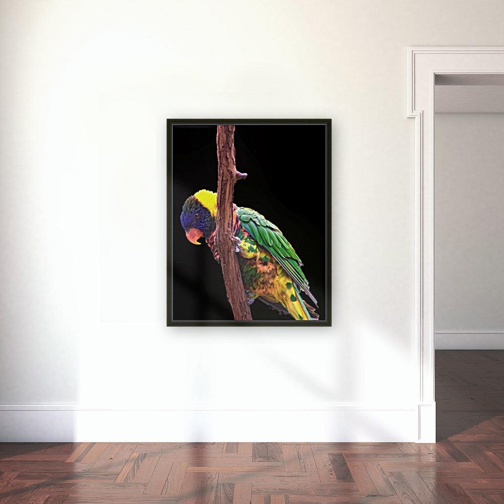 Colorful Bird on branch  Art