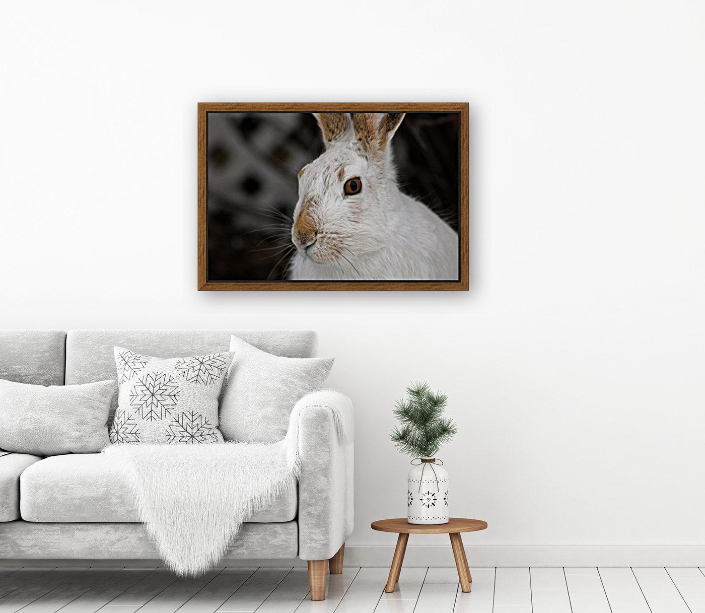 Mr Rabbit  Art