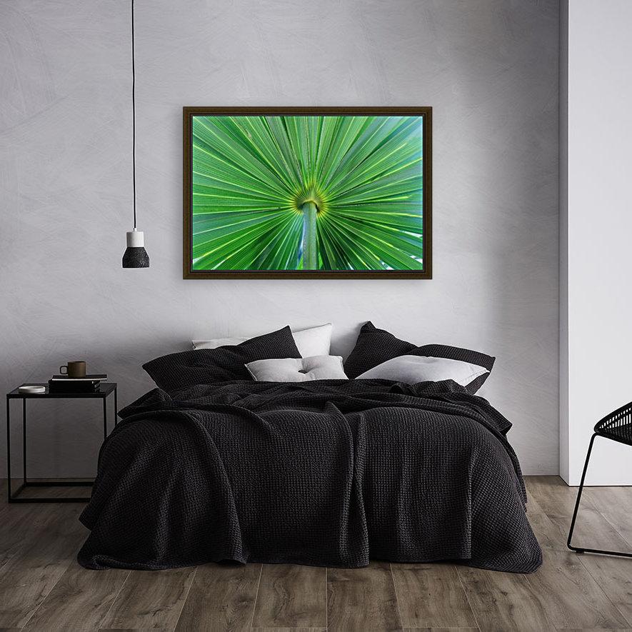 Leafy Green  Art