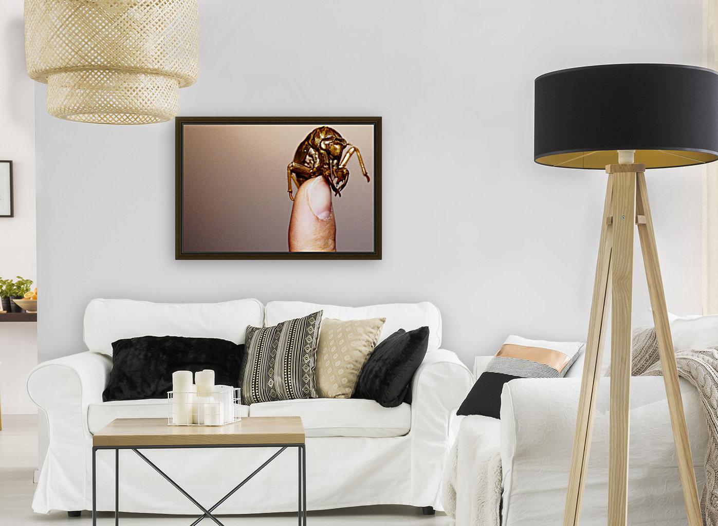 Golden Molt  Art