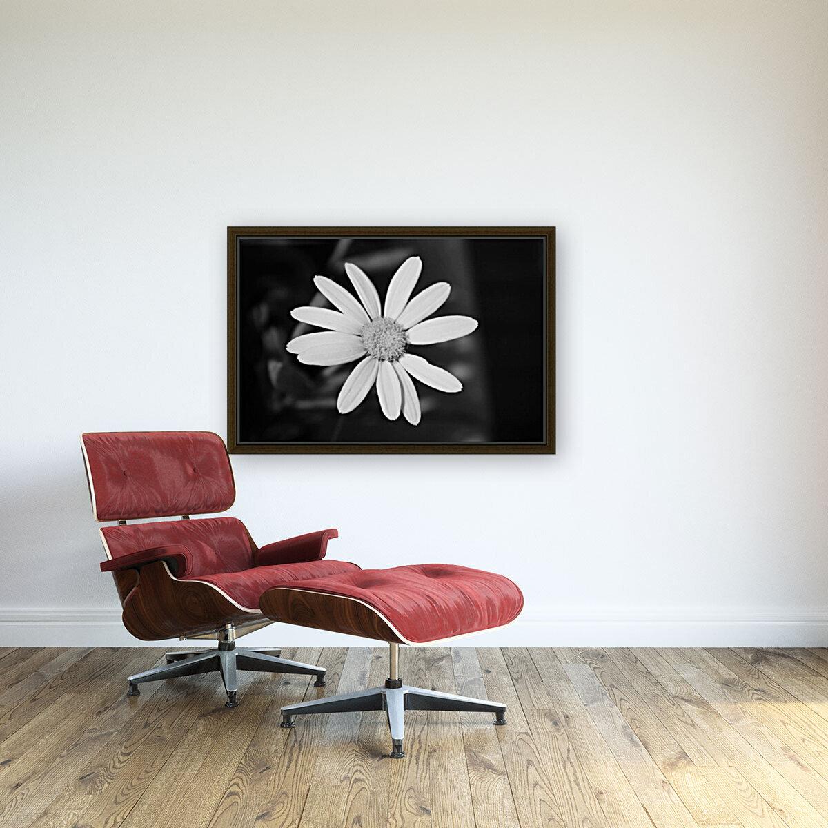 Beautifully White B&W  Art