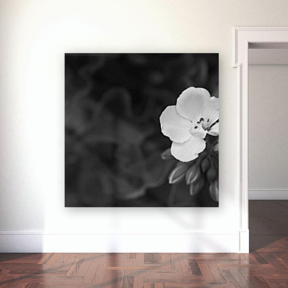 Blooming side flower B&W  Art