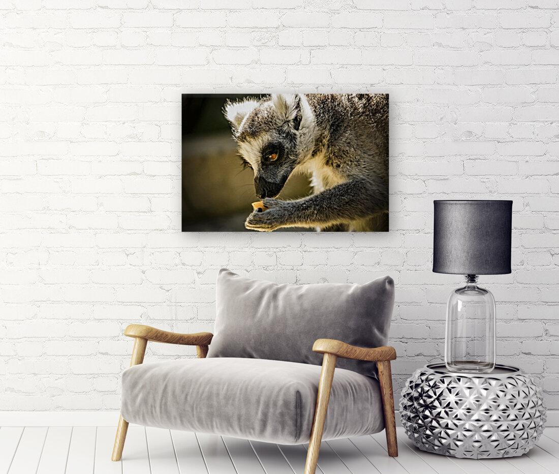 Ring-tailed lemur  Art