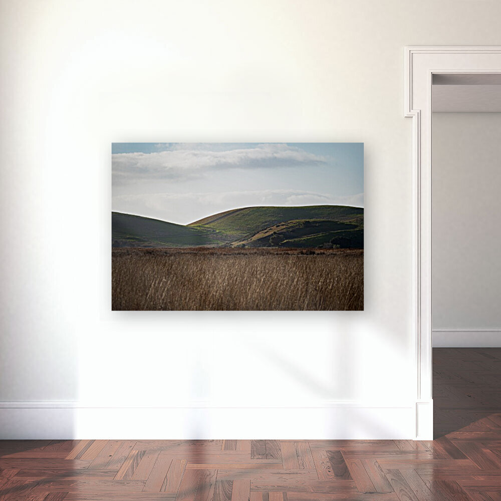 Coyote Hills During Sunset  Art