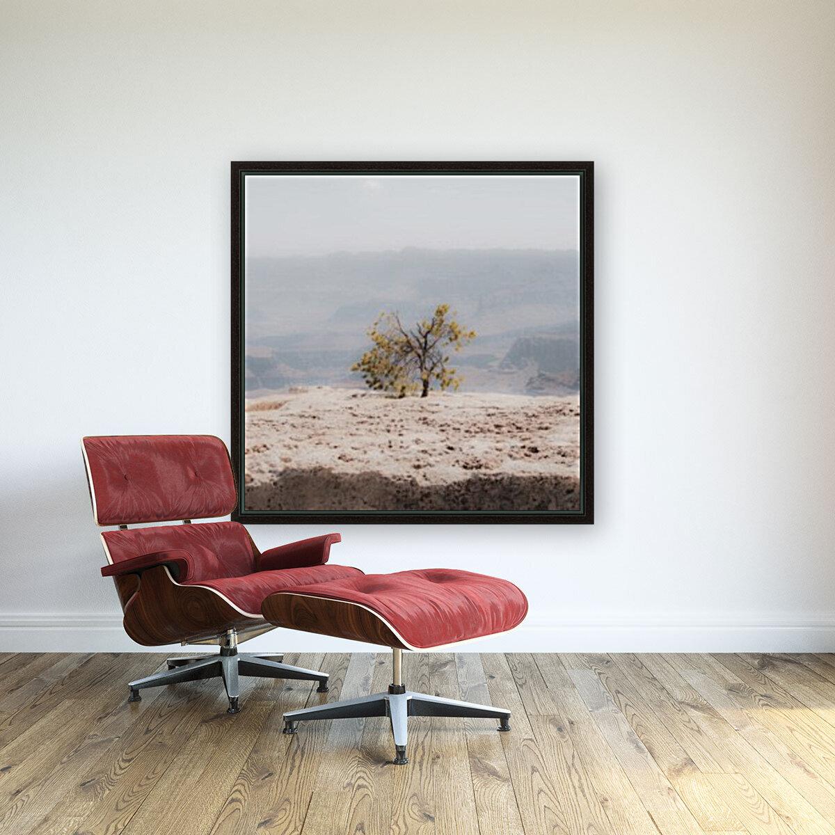 Desert Shrub Grand Canyon 2  Art