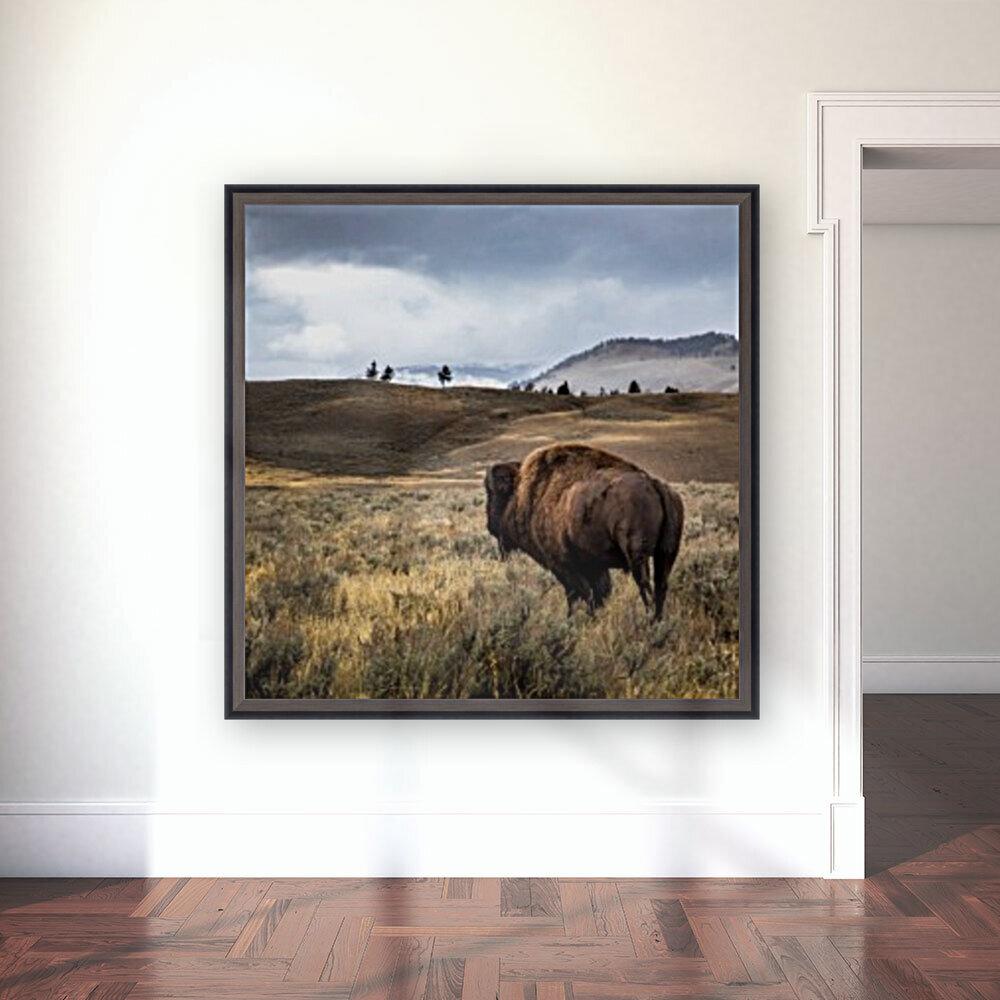 Stormy Bison  Art