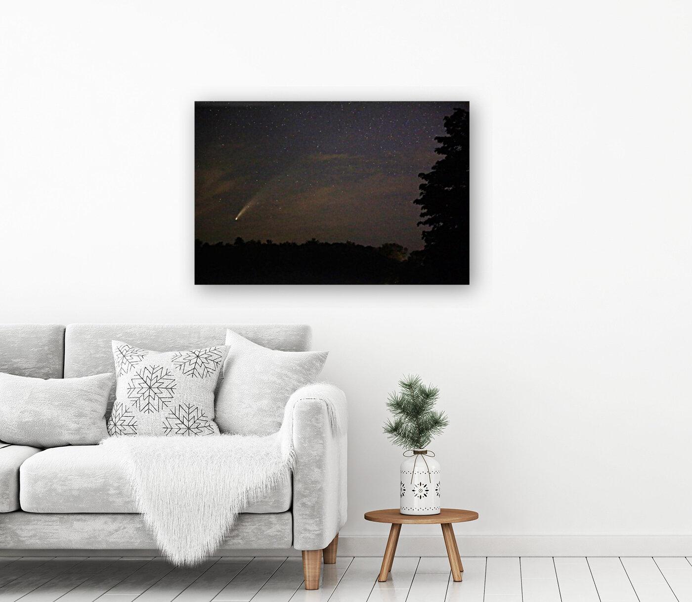 Neowise Comet 7.14.20  Art