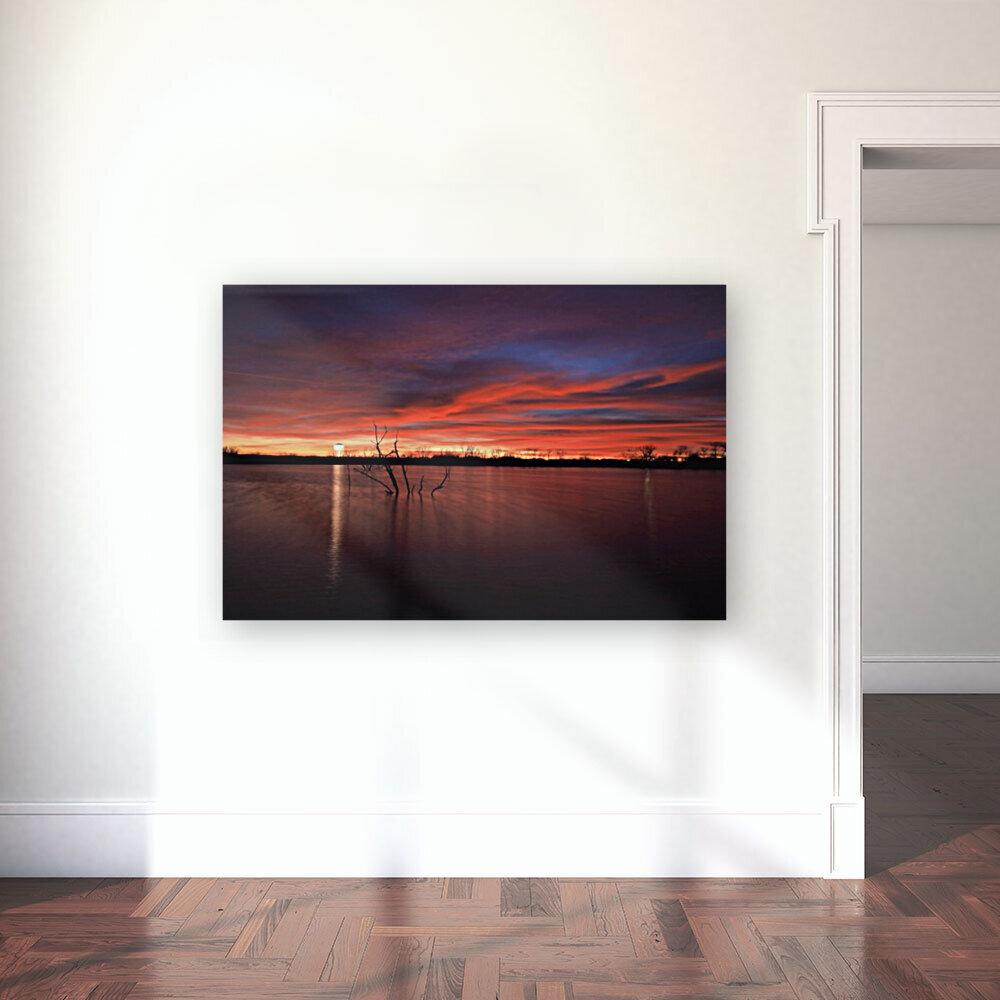 Wellington City Lake Sunset  Art