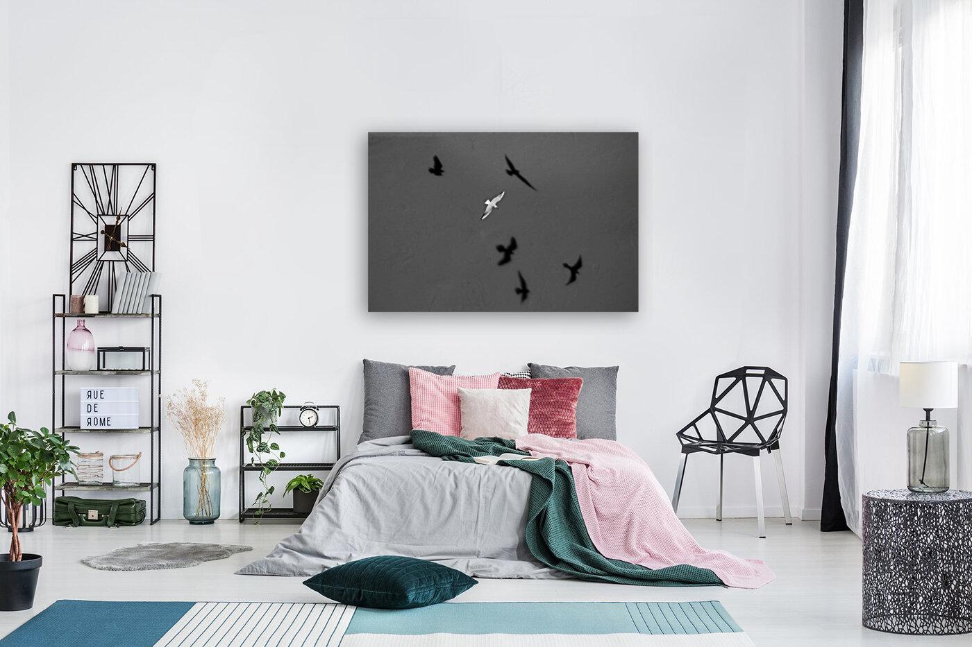 Bird and Shadows  Art