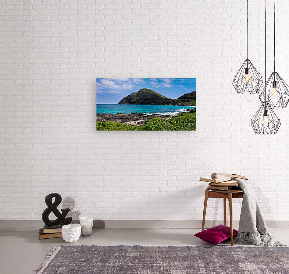 Hawaii Mountain Cliff on Coast  Art