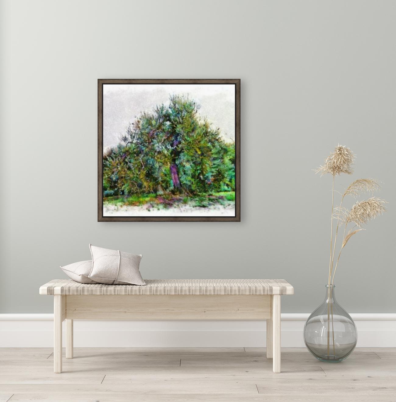Cascading Olive Tree  Art