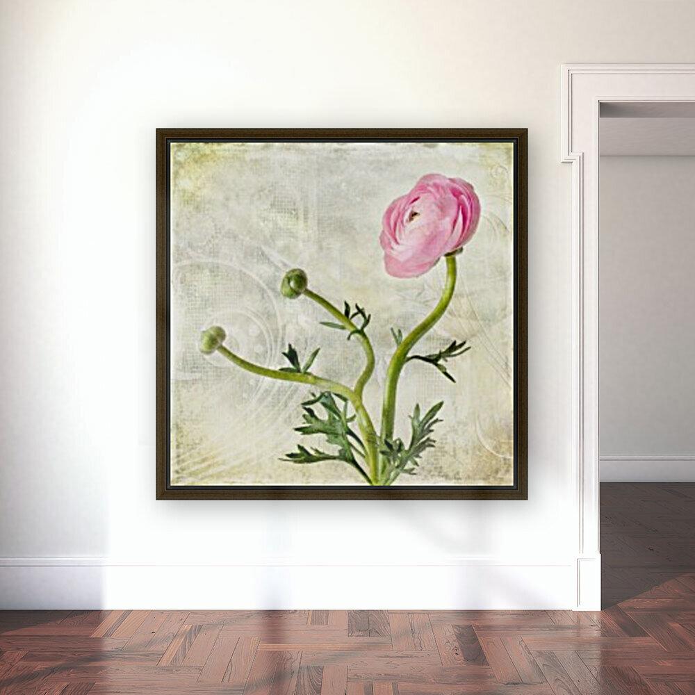 Pink buttercup  Art