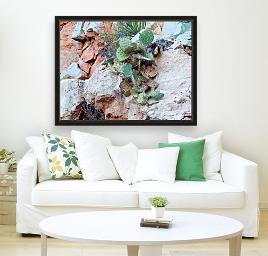 Cactus with Floating Frame