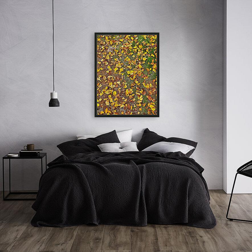 An Autumn Carpet  Art