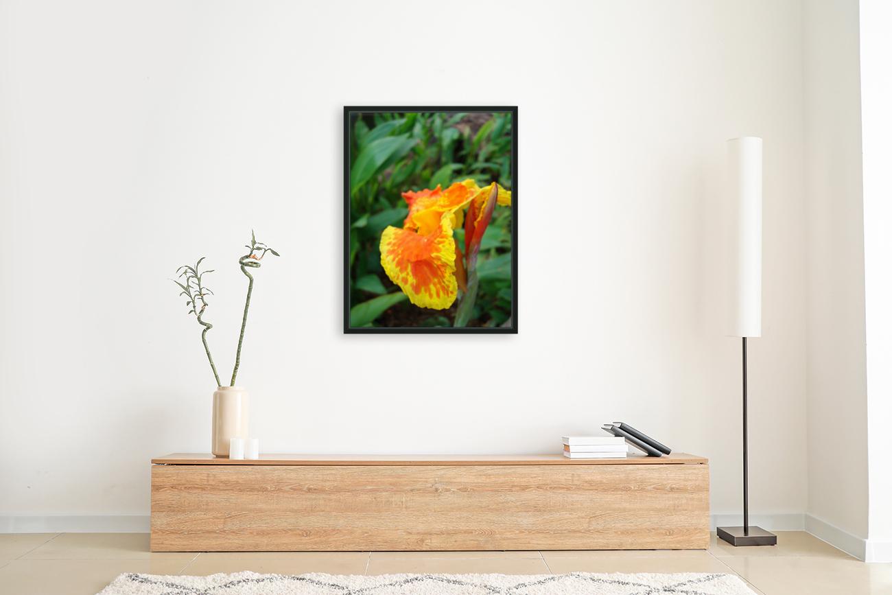 Floral Delight  Art
