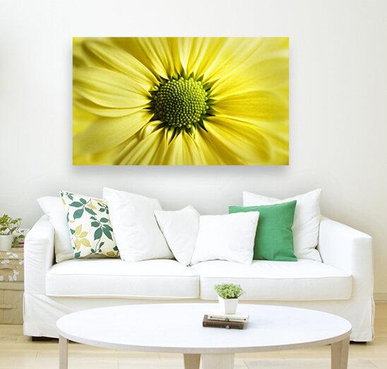 Yellow Daisy  Art