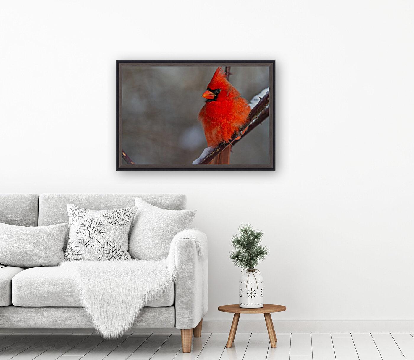 Cardinal ap 1866  Art