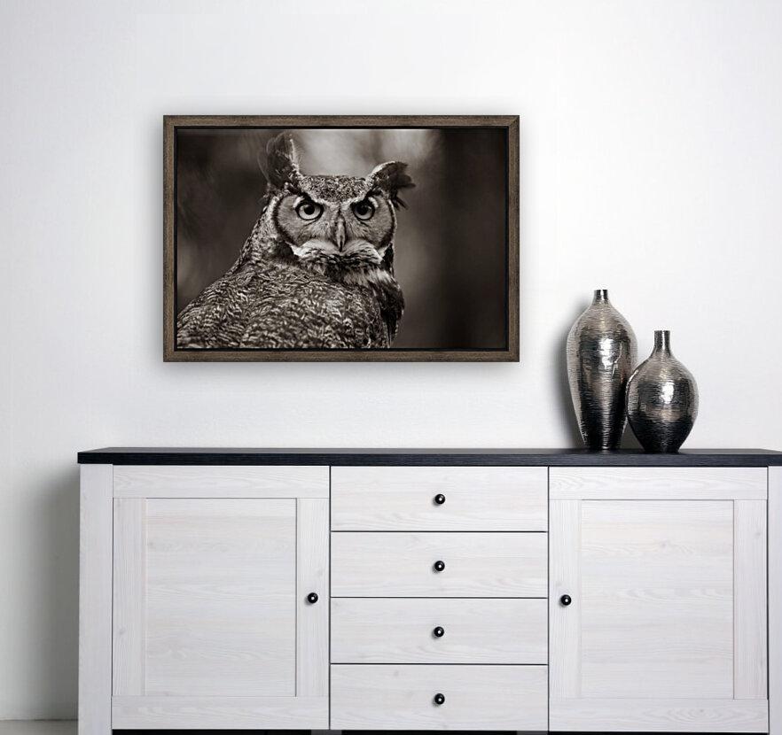 Great Horned Owl ap 2860 B&W  Art