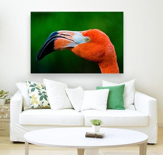 Flamingo Portrait ap 1946  Art