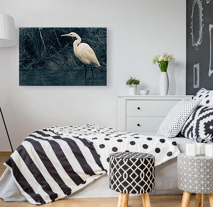 Great White Egret ap 1839 B&W  Art