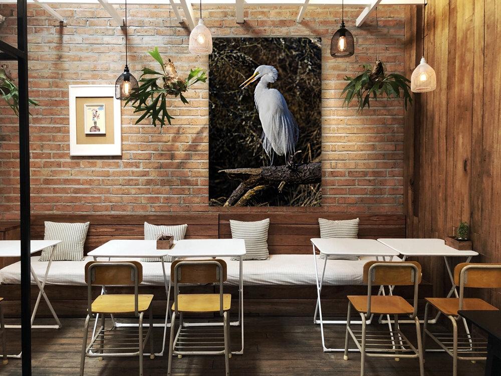 Great White Egret ap 2765  Art