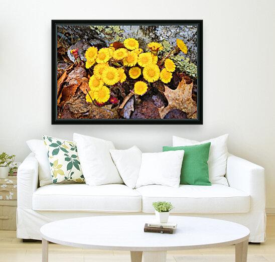 Flowers ap 2222  Art