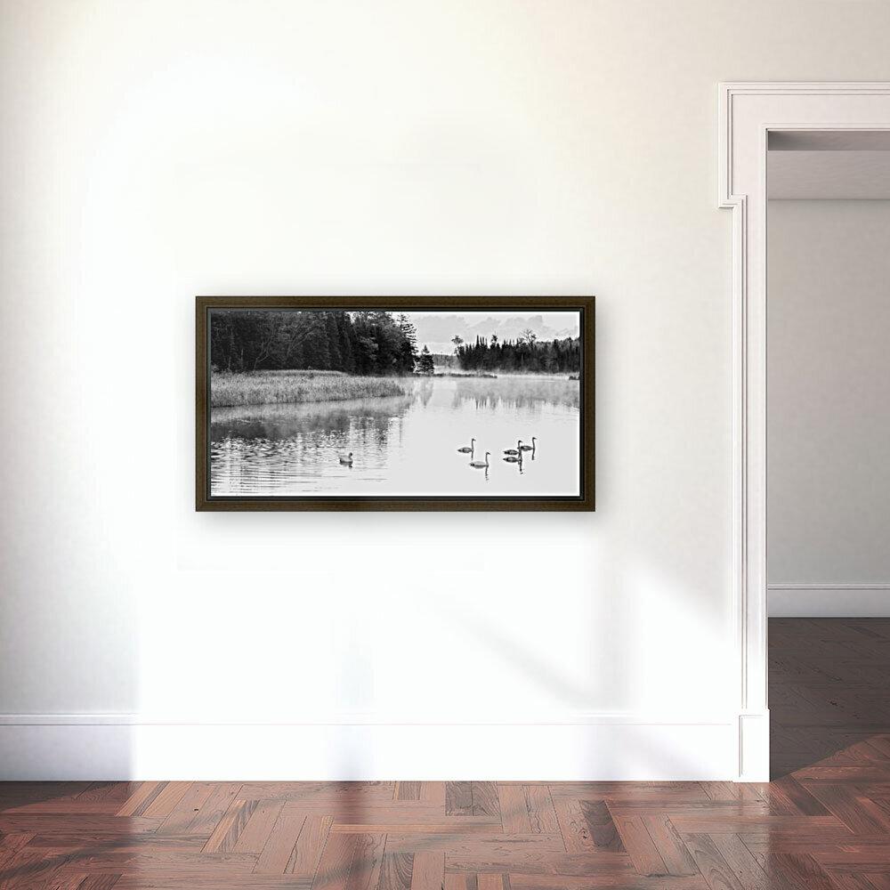 Swan Family ap 2694 B&W  Art