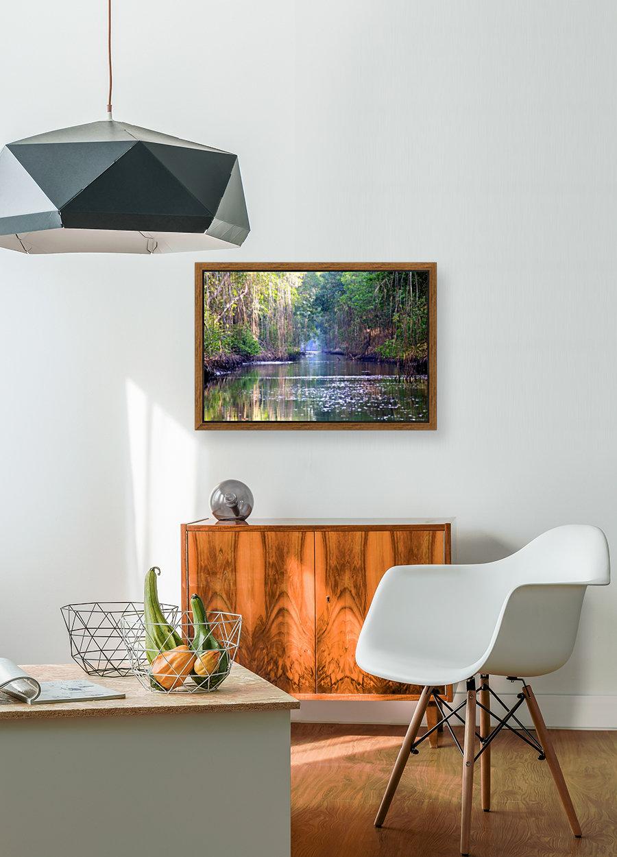 Caroni Swamp   Trinidad  Art