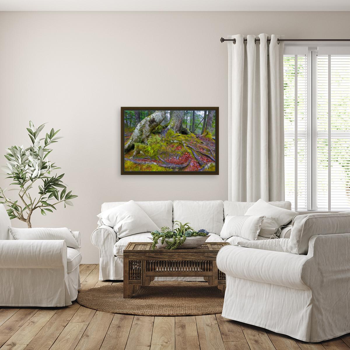 Moss   Lichen ap 2196  Art