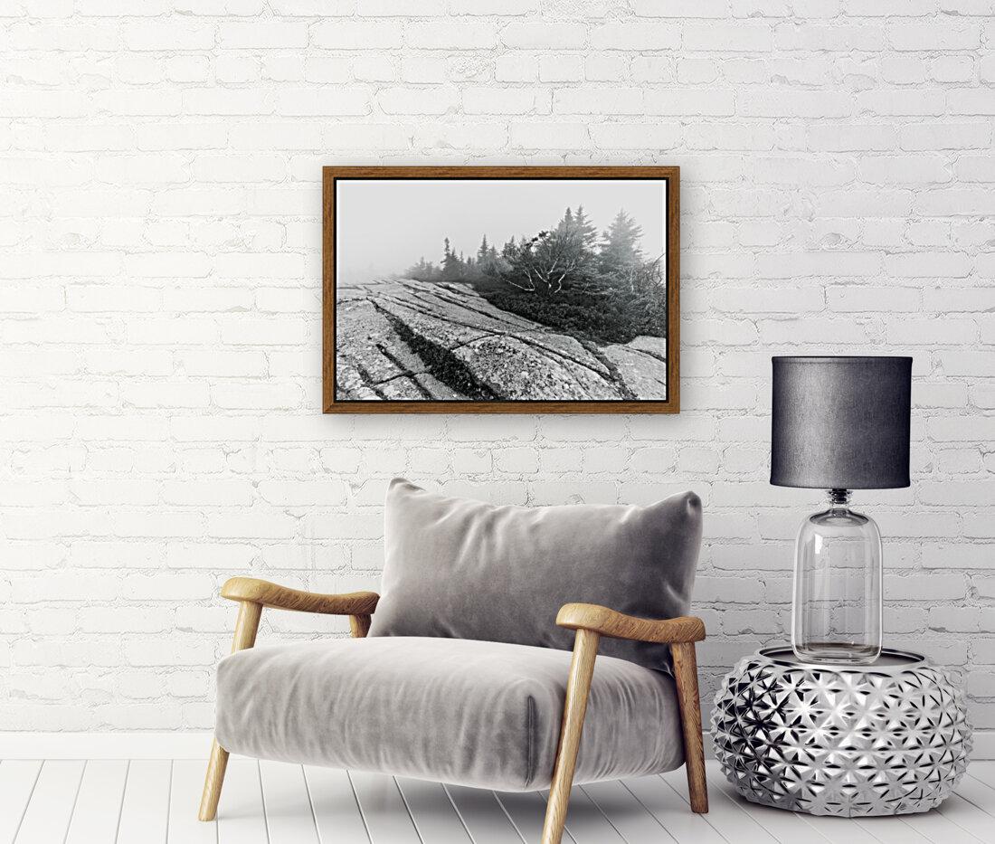 Lichen and Granite ap 2340 B&W  Art