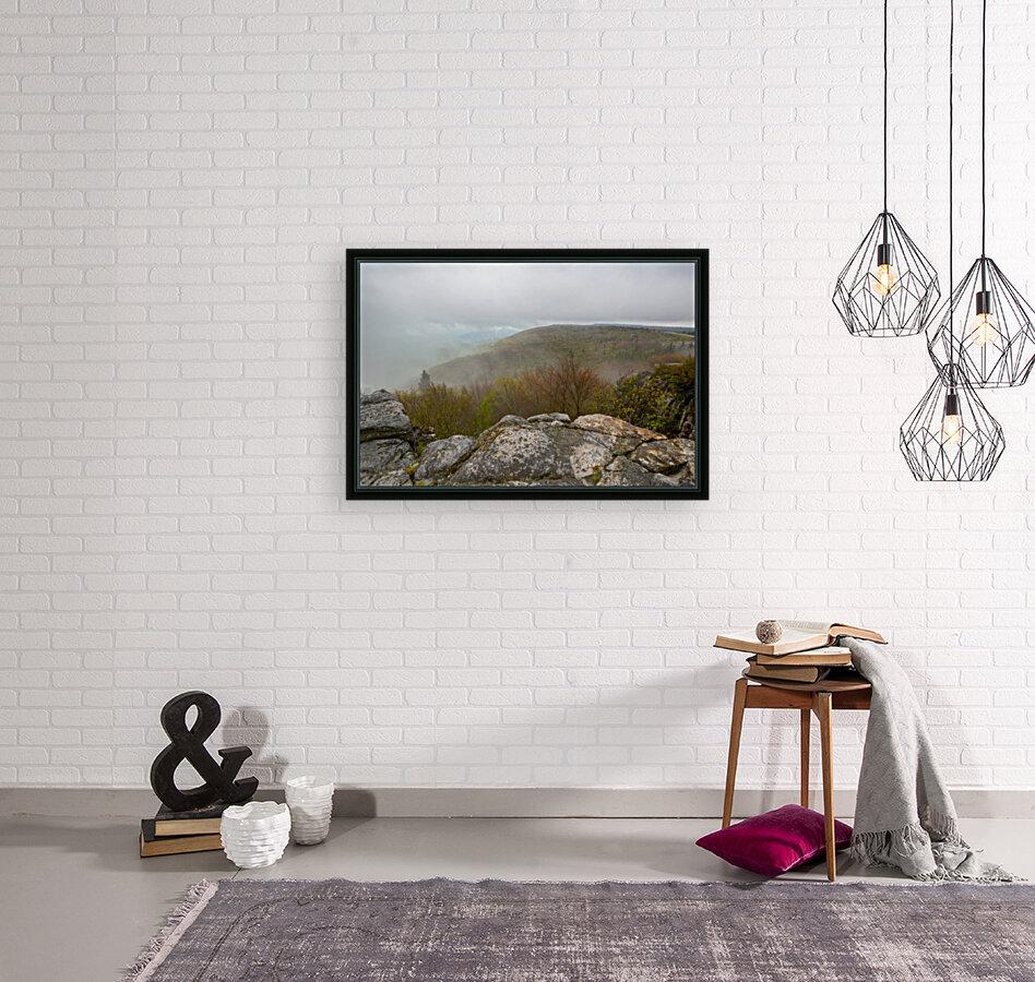 Low Ceiling ap 2945  Art