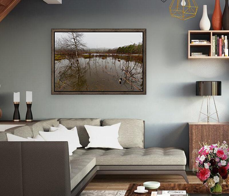 Beaver Pond ap 2357  Art