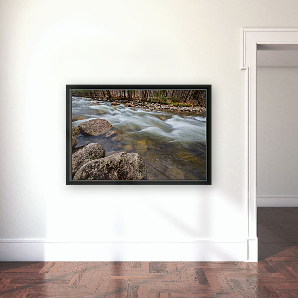 Rapids ap 2158  Art