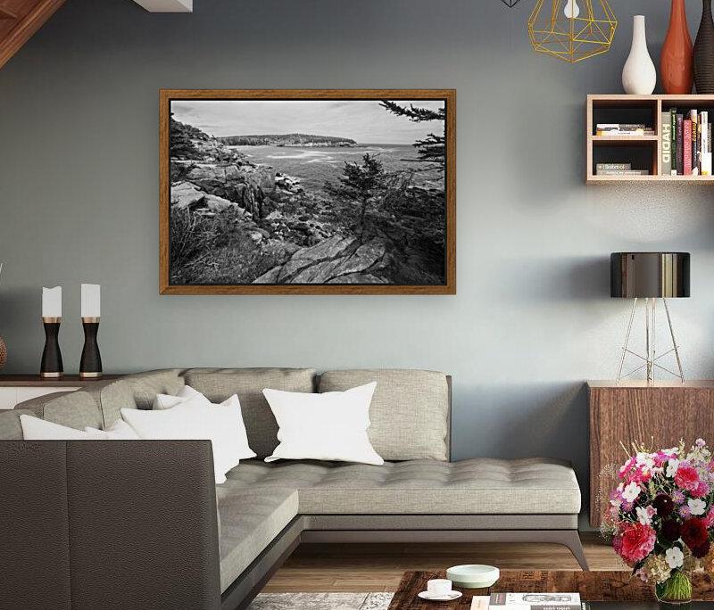 Acadia ap 2376 B&W  Art