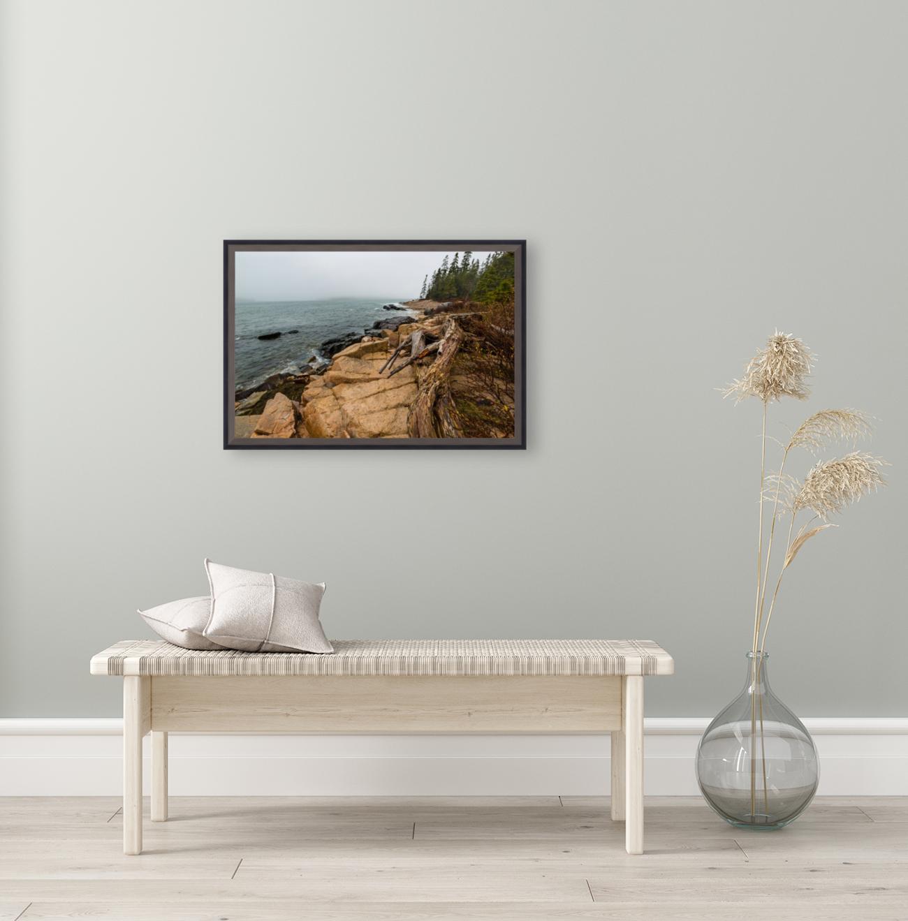 Driftwood ap 2257  Art