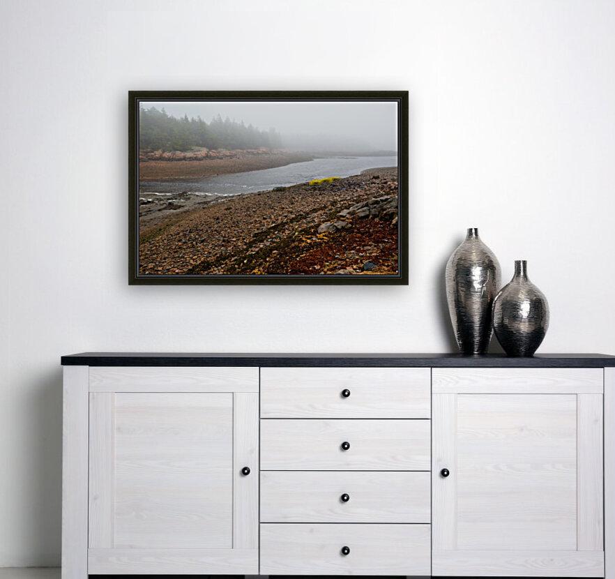 Low Tide ap 2296  Art
