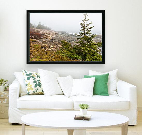 Lone Pine ap 2284  Art