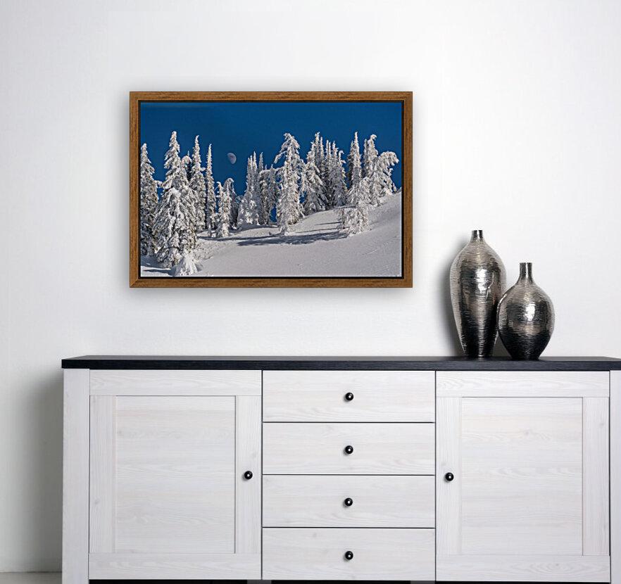Alpine moon  Art