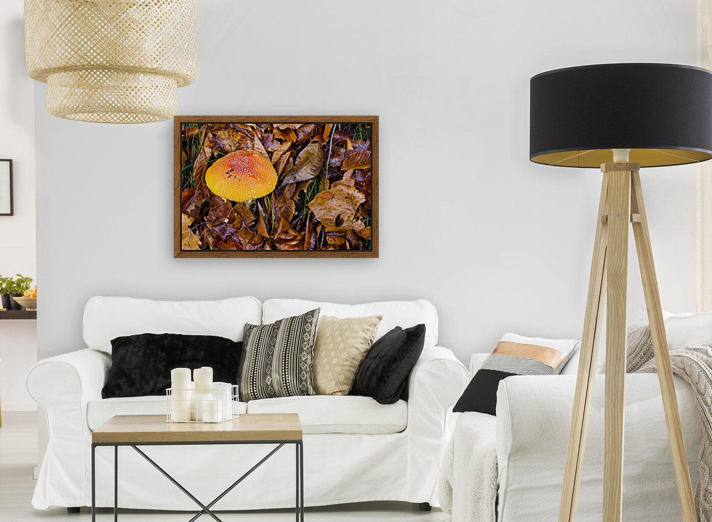 Mushroom ap 1579  Art