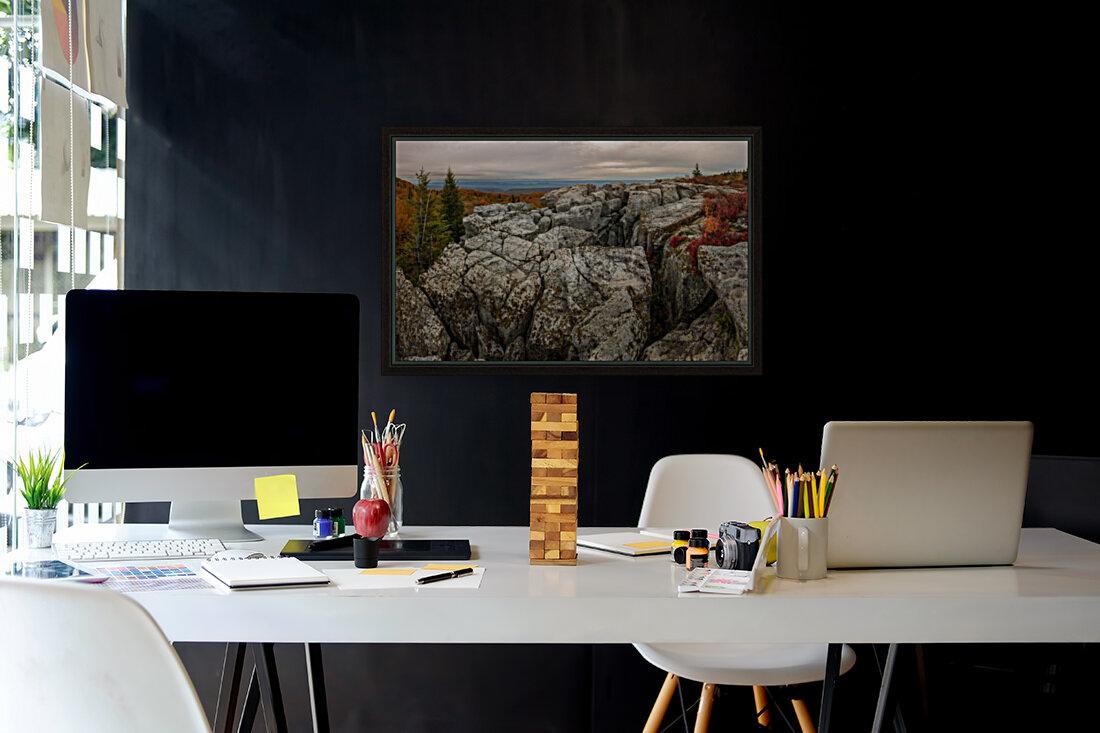Bear Rocks Preserve apmi 1791  Art