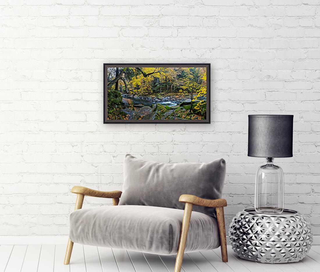 Birch apmi 1951 38x20  Art
